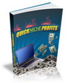 Thumbnail Quick Niche Profits 2
