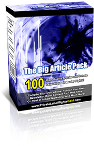 Product picture 100 Big Article Pack